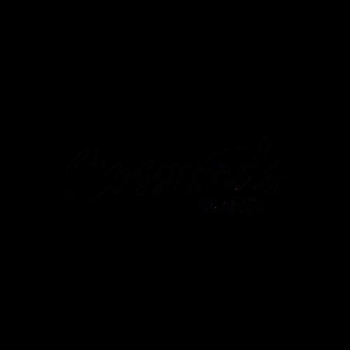 Crosswinds ESP Logo for micro